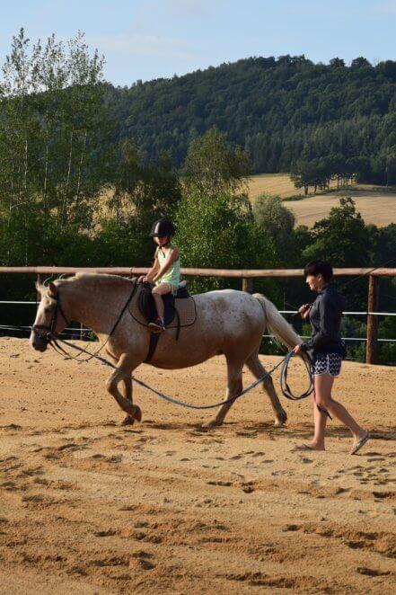 konie-5