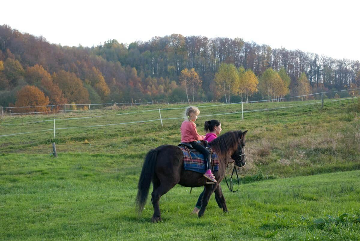 Przejażdzki konne dla dzieci