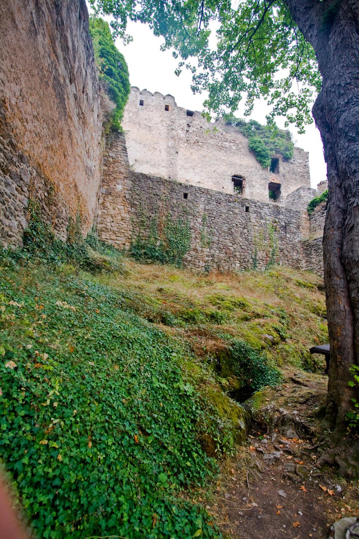 Zamek Chojnik wycieczka